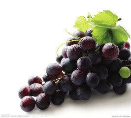 白领饮食:电脑族必吃10款保健水果